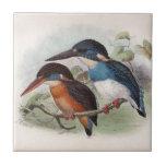 Pájaros del vintage tejas  ceramicas