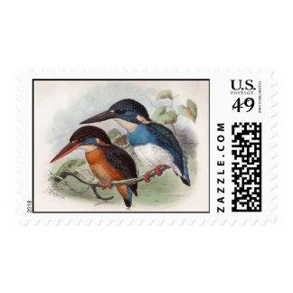 Pájaros del vintage timbres postales