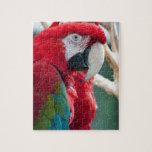 Pájaros disimulados puzzles