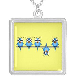 pájaros divertidos collar personalizado