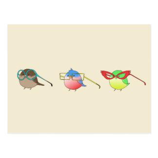 Pájaros divertidos postal