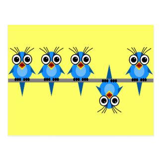 pájaros divertidos postales