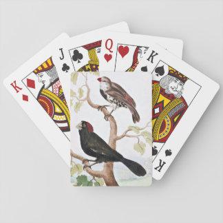 Pájaros echados a un lado con cresta y manchados baraja de cartas