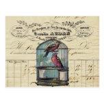 Pájaros elegantes franceses del amor del Birdcage Postal