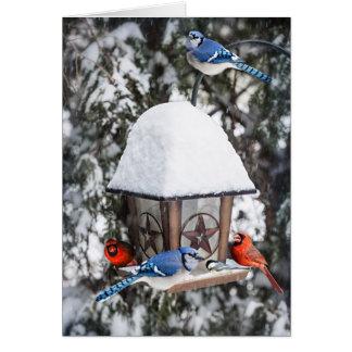 Pájaros en alimentador del pájaro en invierno tarjeta pequeña