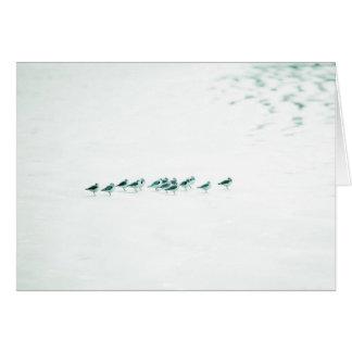 Pájaros en blanco tarjetón