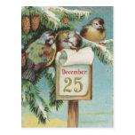 Pájaros en Decemeber 25to Tarjetas Postales