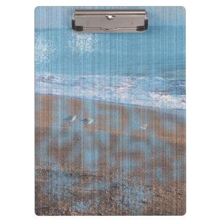 pájaros en imagen grunged playa de la orilla de