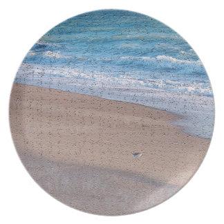 pájaros en la orilla de mar del crujido de la platos para fiestas