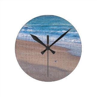 pájaros en la orilla de mar del crujido de la reloj redondo mediano