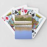Pájaros en la orilla del río cartas de juego