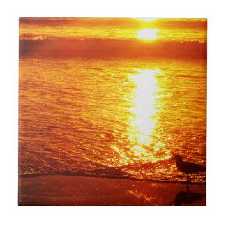 Pájaros en la playa de Santa Mónica en la puesta d Azulejo Cuadrado Pequeño