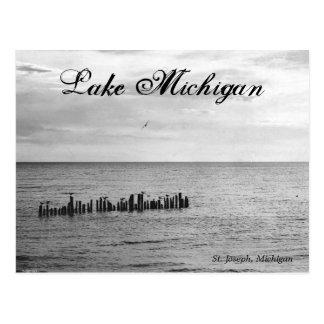 Pájaros en la postal del lago Michigan