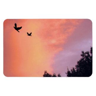 Pájaros en la puesta del sol iman de vinilo