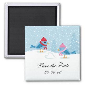 Pájaros en la reserva linda de la nieve el imán de
