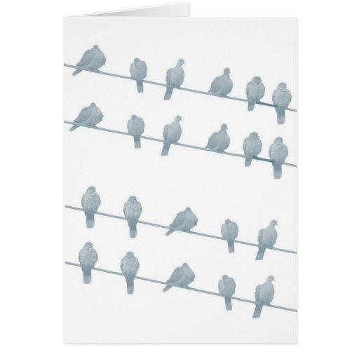 Pájaros en la tarjeta del alambre II