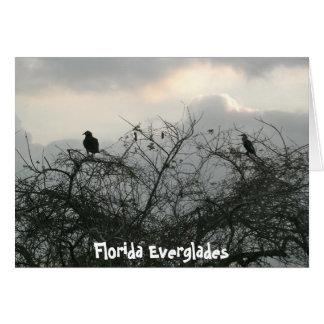 Pájaros en la tormenta tarjetas