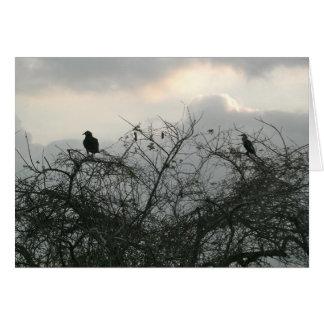 Pájaros en la tormenta felicitaciones