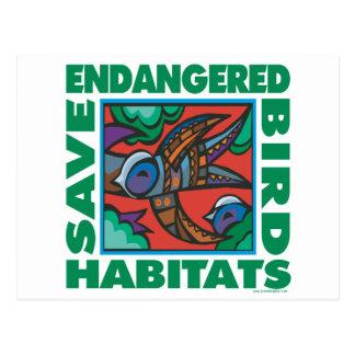 Pájaros en peligro tarjetas postales