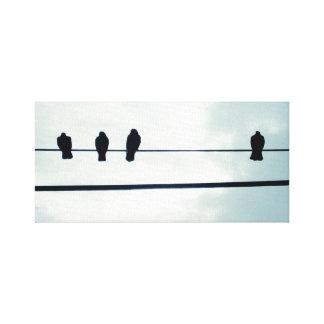 Pájaros en un alambre impresion en lona