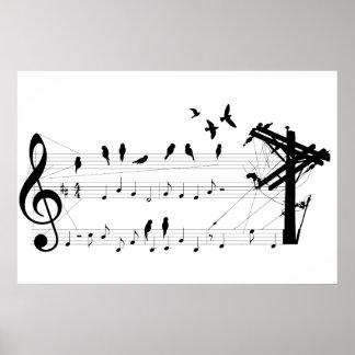 Pájaros en un poster de la cuenta