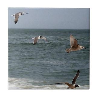 Pájaros en vuelo azulejo ceramica