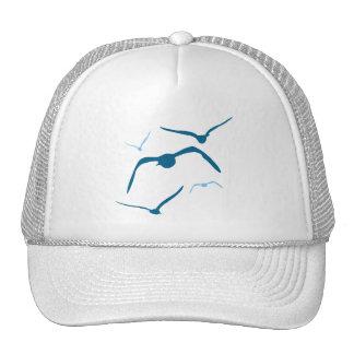 Pájaros en vuelo gorra