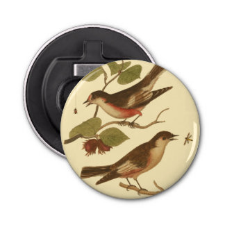 Pájaros encaramados en las ramas que comen abrebotellas redondo