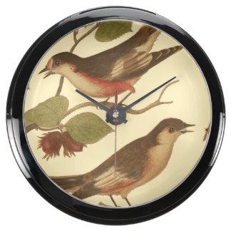Pájaros encaramados en las ramas que comen reloj aquavista