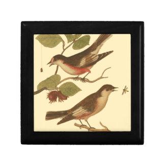 Pájaros encaramados en las ramas que comen cajas de joyas