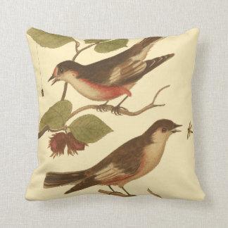 Pájaros encaramados en las ramas que comen almohada