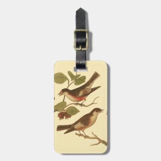 Pájaros encaramados en las ramas que comen etiqueta para maleta