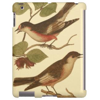 Pájaros encaramados en las ramas que comen funda para iPad
