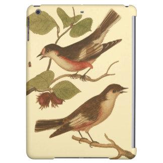 Pájaros encaramados en las ramas que comen