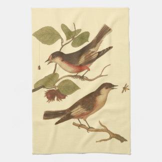 Pájaros encaramados en las ramas que comen toallas de mano