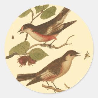 Pájaros encaramados en las ramas que comen etiqueta redonda
