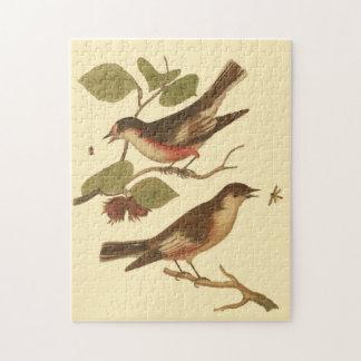 Pájaros encaramados en las ramas que comen puzzles
