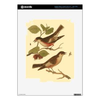 Pájaros encaramados en las ramas que comen iPad 3 pegatina skin