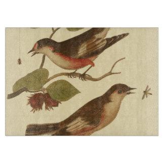Pájaros encaramados en las ramas que comen tablas para cortar