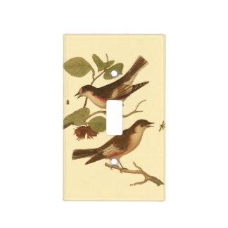 Pájaros encaramados en las ramas que comen placa para interruptor