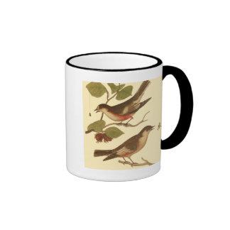 Pájaros encaramados en las ramas que comen taza de café