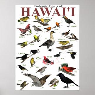 Pájaros endémicos de Hawai'i Póster