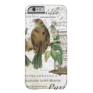 Pájaros franceses y birdcage del vintage moderno funda para iPhone 6 barely there