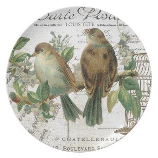 Pájaros franceses y birdcage del vintage moderno platos para fiestas