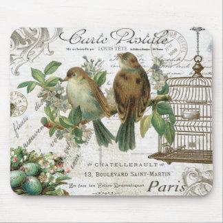 Pájaros franceses y birdcage del vintage moderno tapete de ratones