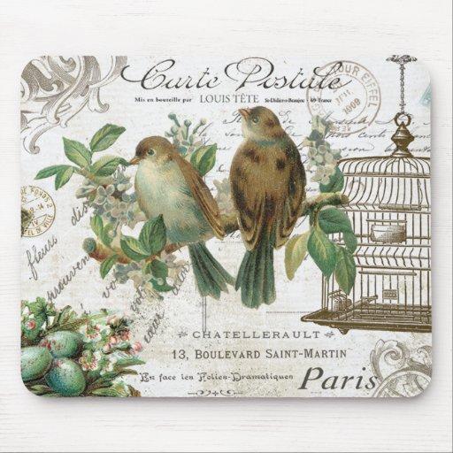 Pájaros franceses y birdcage del vintage moderno tapetes de ratones