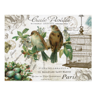 Pájaros franceses y birdcage del vintage moderno tarjetas postales