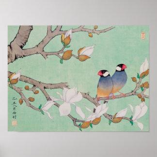 Pájaros gemelos en el poster de las ramas póster