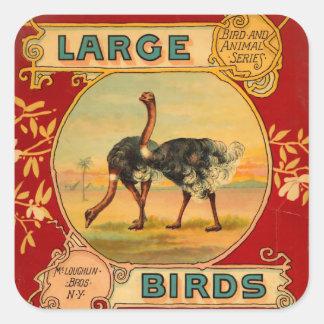 Pájaros grandes calcomanía cuadradas personalizadas