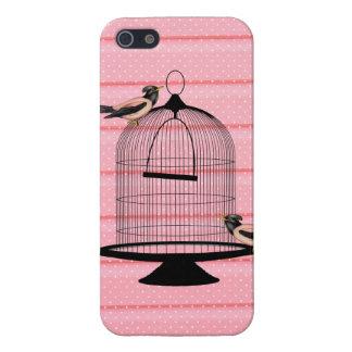 pájaros hermosos del rosa del vintage y lunar lind iPhone 5 coberturas